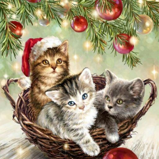 cropped-a527c40c63b95354d604ab5ad09e39c3-christmas-animals-christmas-cats.jpg
