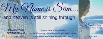 My Name is Sam... Banner